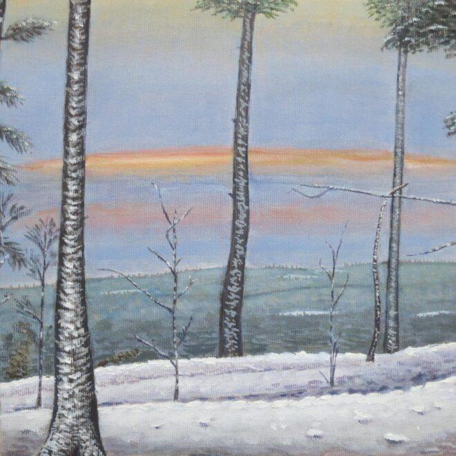 Winterwald (2)